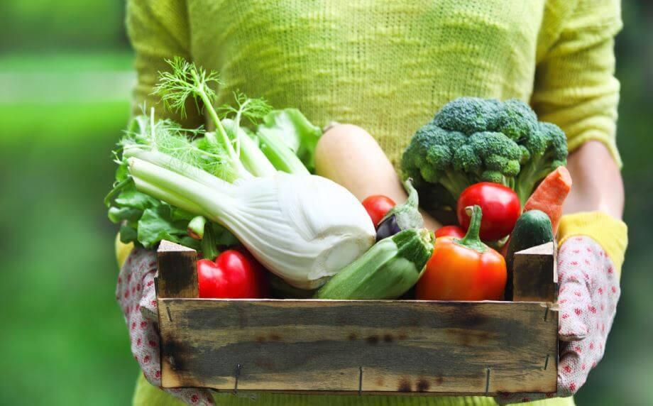 Uma mulher segurando uma caixa com várias verdura e legumes recém colhidos