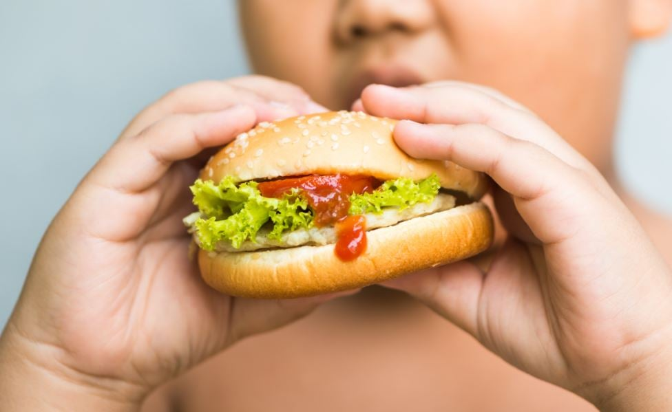 Criança comendo um x-salada com ketchup