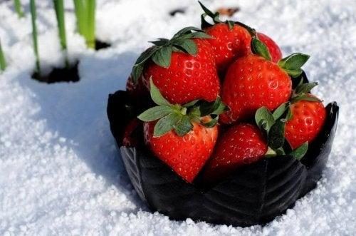 Morangos em um recipiente no meio da neve