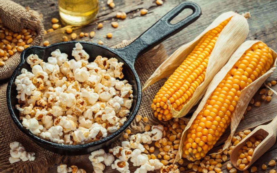 Pipoca e espiga de milho