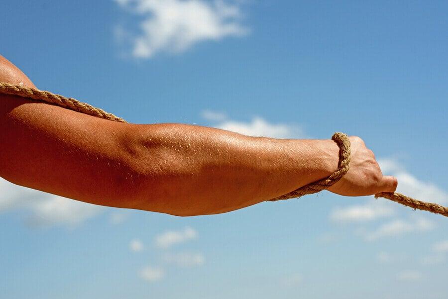 O que determina a força: fatores musculares e nervosos