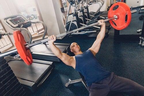 Como posso aumentar a massa muscular rapidamente?