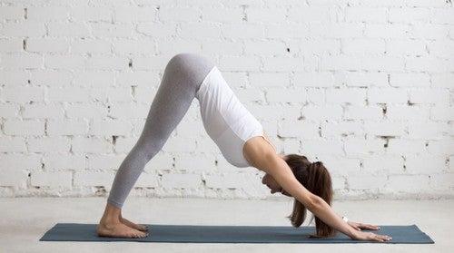 O yoga limpa a mente, libera o estresse e relaxa os músculos