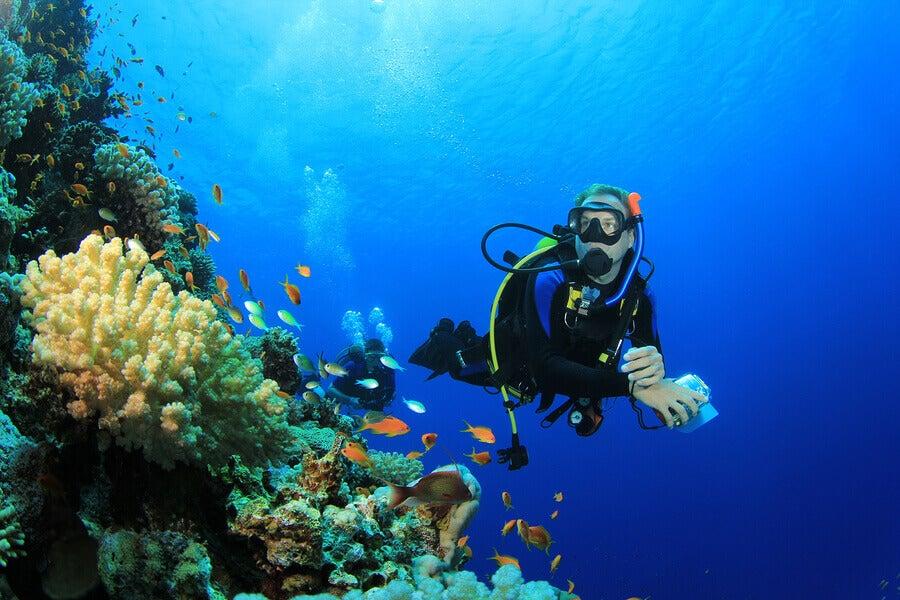 7 melhores lugares para fazer mergulho