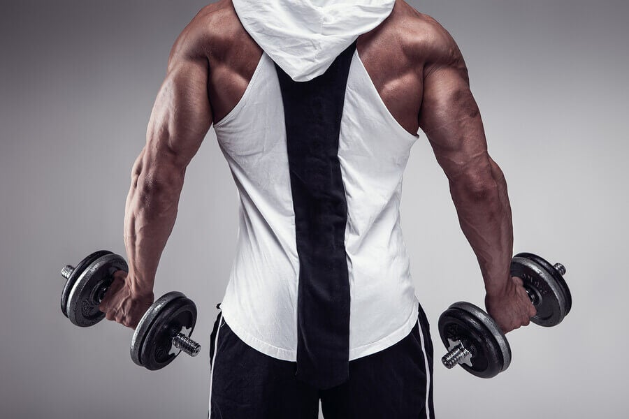 Músculos eretores da coluna: exercícios para fortalecimento