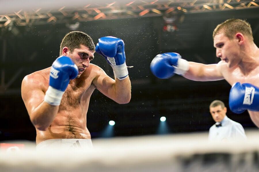 Quais são as categorias do boxe?