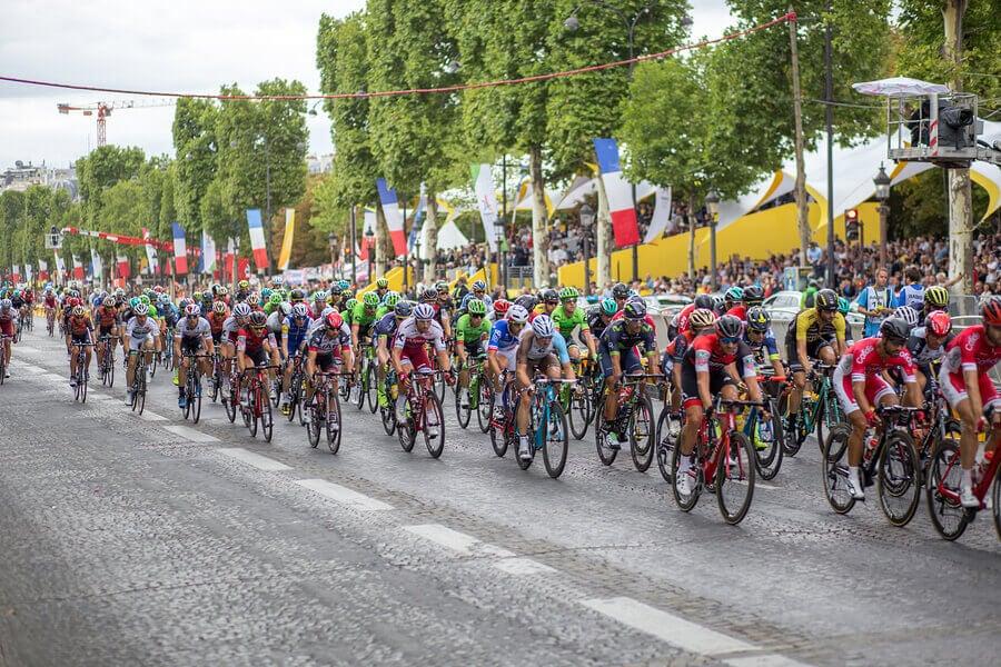 Pelotão de ciclistas que disputam o Tour de France.