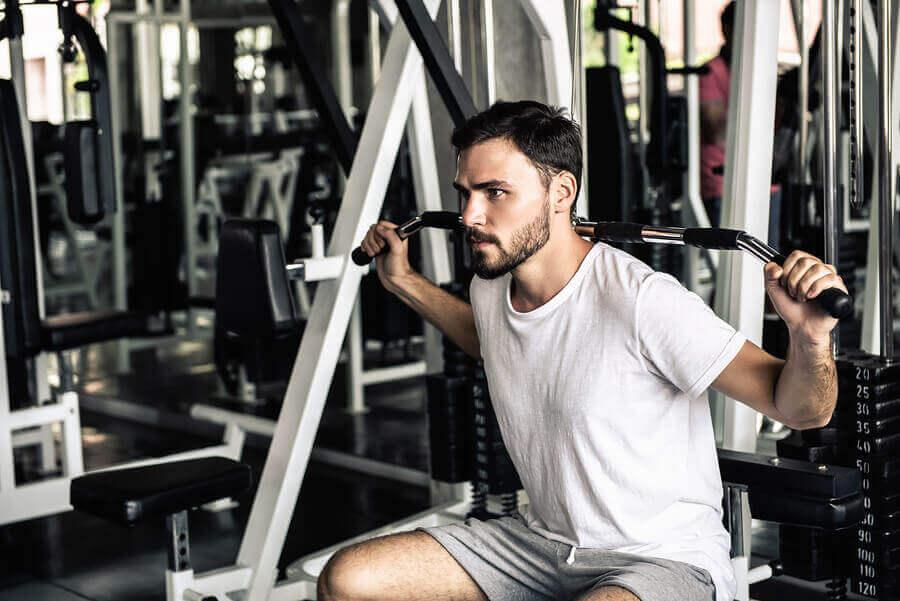 Fortalecer os músculos ajuda a melhorar a postura corporal