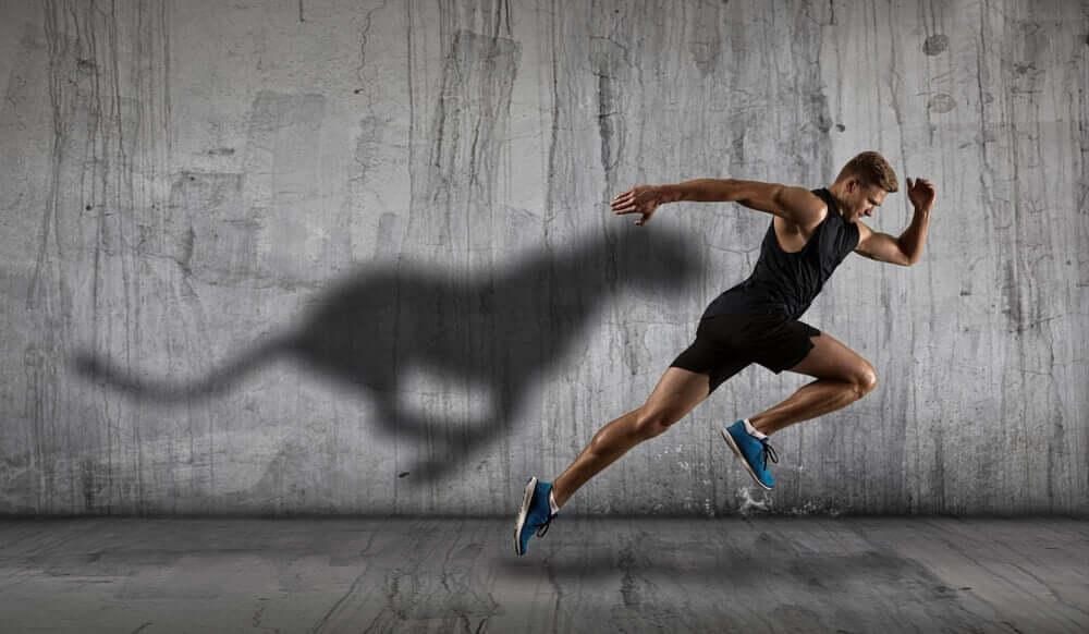 Exercícios para treinar a velocidade