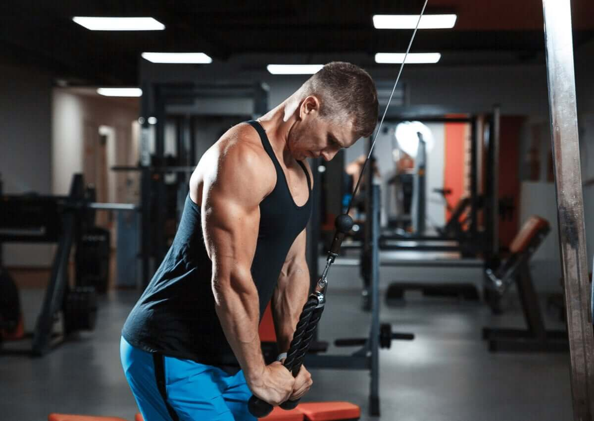 exercícios com faixa elástica para o tríceps