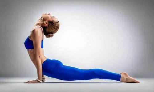 yukarı bakan köpek yoga kadın