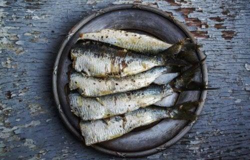 Omega 3 kaynağı balık