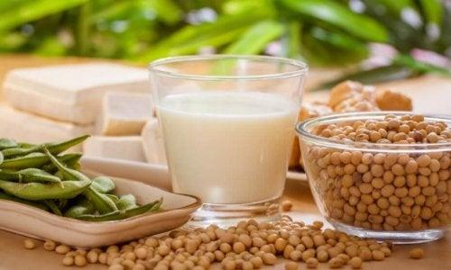 soya taneleri, tofu ve bir bardak soya sütü