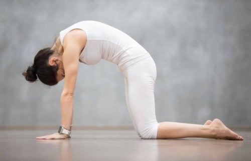 Kedi duruşunda duran yoga yapan kadın