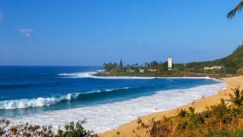 Sörf Yapmak için En İyi Yerler