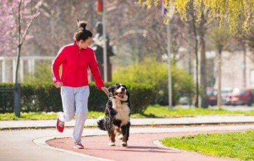 koşu parkurunda köpeği ile koşan gri eşofmanlı kadın