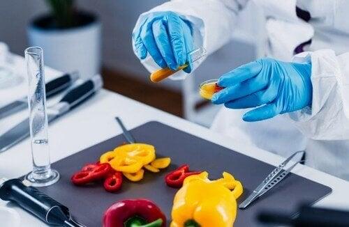 Genetiği Değiştirilmiş Gıdaların Artıları ve Eksileri