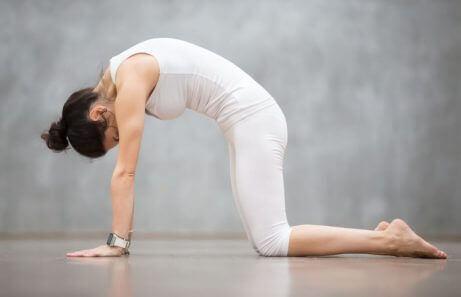 omurga hareketlilik egzersizi