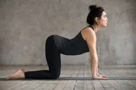 yoga esneme hareketi yapan kadın