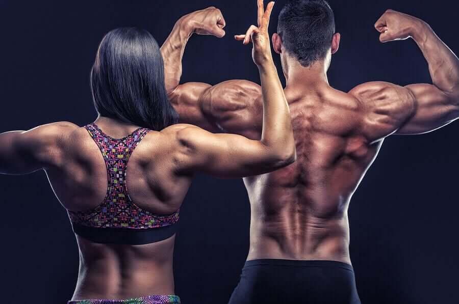 Sırt Kaslarını Güçlendirmek İçin Egzersiz Önerileri