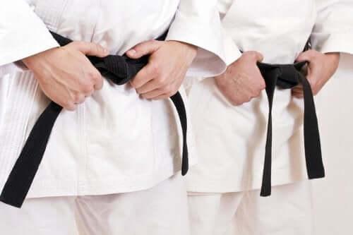 Karate Hakkında Bilmeniz Gereken Her Şey