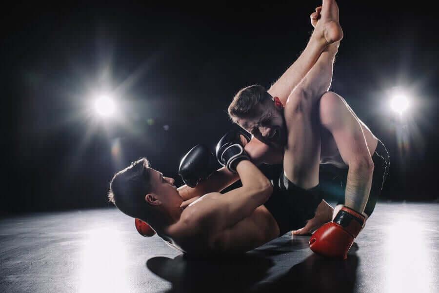 Karma Dövüş Sanatları Hangi Dalları İçeriyor?