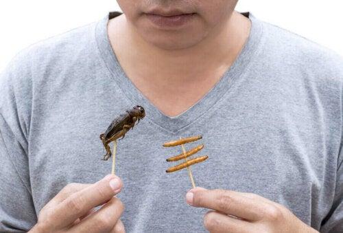 Böcek yiyen bir kişi.