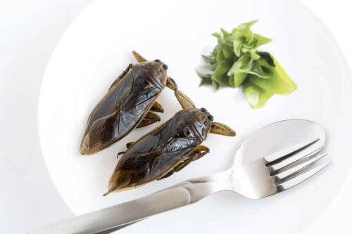 Yenebilen böcekler arasında popüler olan böcek türlerinden bir tanesi.