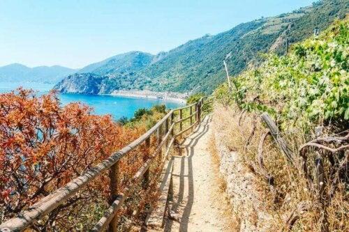 Dünyanın En İyi 7 Doğa Yürüyüşü Parkuru