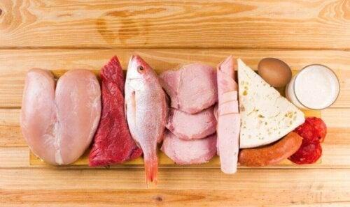 Protein içeren çeşitli gıdalar.