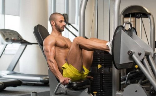 leg training cover