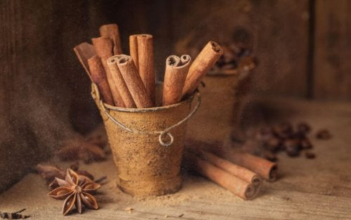 The Benefits of Cinnamon for Your Body
