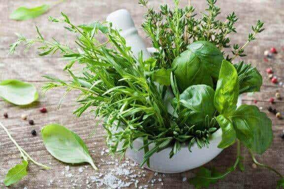 The Health Benefits of Tarragon