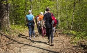 hiking and trekking on holidays