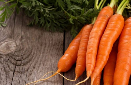 Fresh carrots bunch with green tops on wooden surface