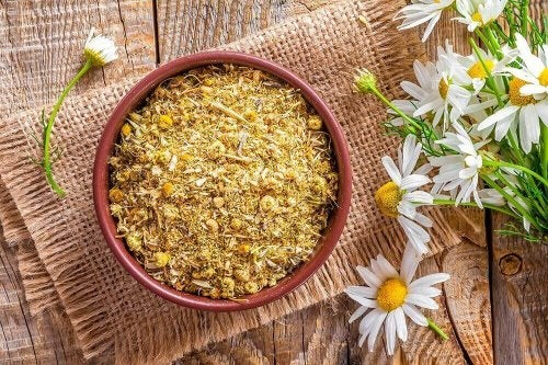 Bowl of dried chamomile herb and flowers