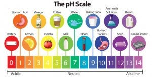 A food pH scale
