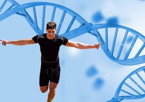 Training and Supplementation According to Genetics