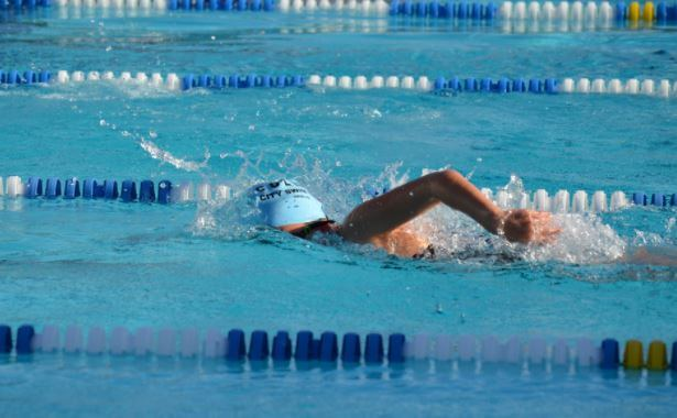 A person swimming in an Olympic pool as part of their cardio training