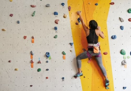 A woman climbing a rock climbing wall.