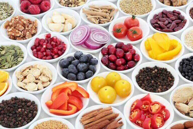 Plates with varied healthy foods