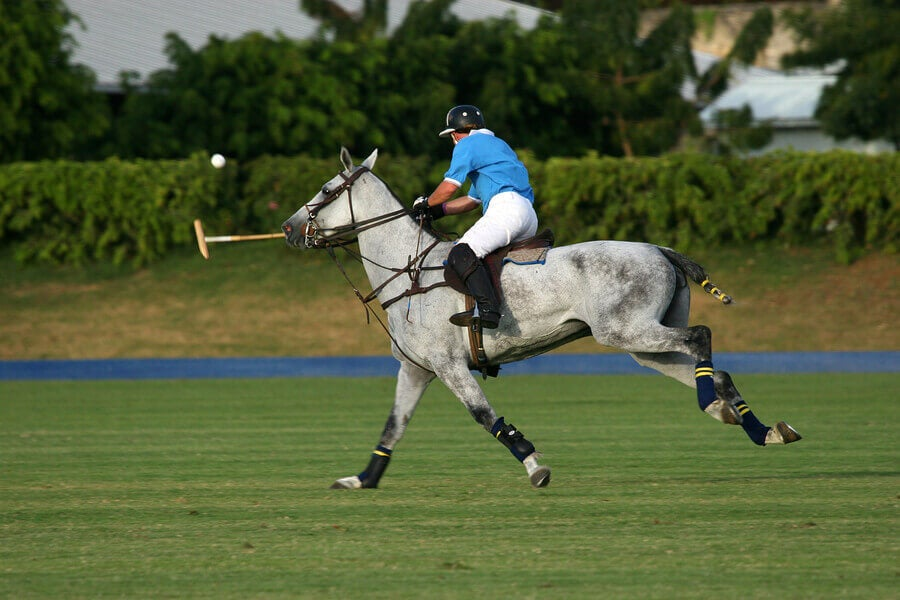 Polo is one of the oldest sports in the world.