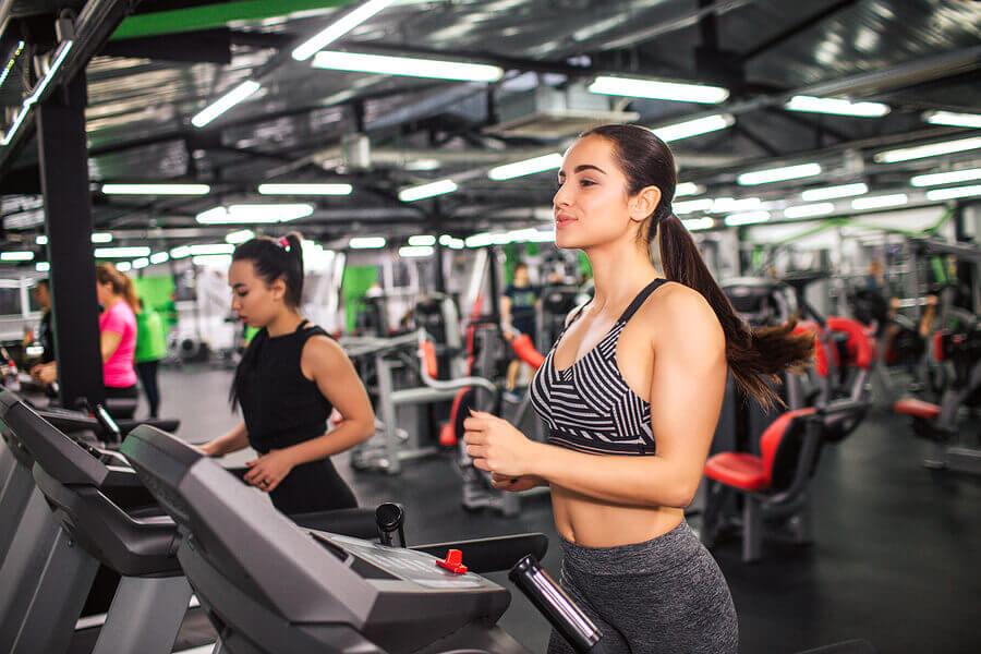 gym equipment treadmill
