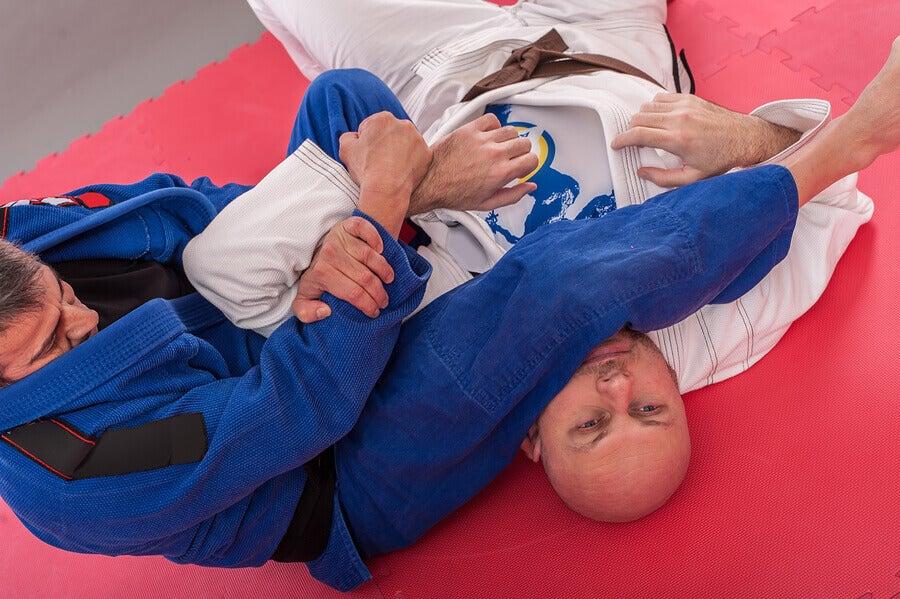 mixed martial arts jiu jitsu