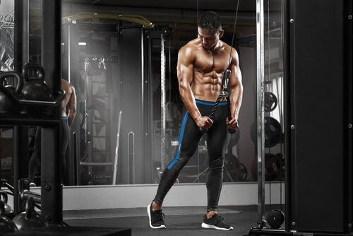 Photo of a man body building as an obsession a described by the text.
