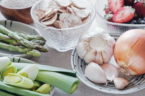 Prebiotics: Why are they so Good for Gut Flora?