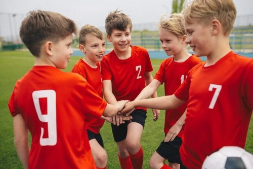 Regulations for Sports Schools