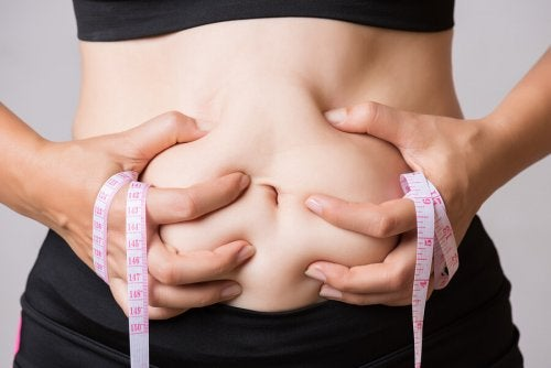 Are There Foods that Help Burn Abdominal Fat?