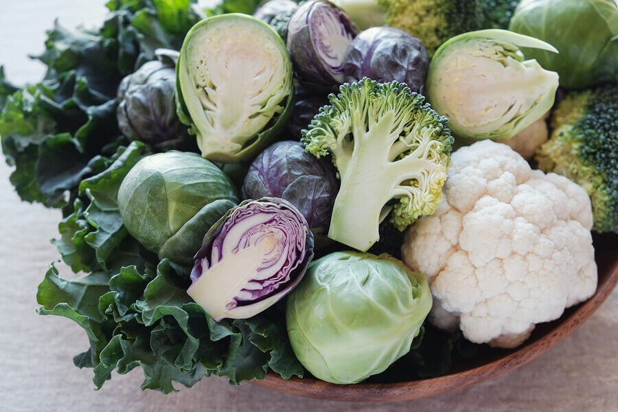 Important Information Regarding Brassicaceae Vegetables
