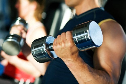 If I want to burn fat, should I do cardio or weights to get bigger biceps